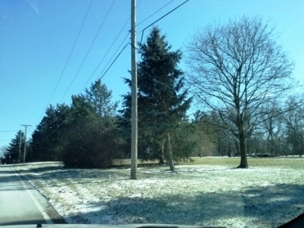 Listing Image #1 - Land for lease at 5712 Rt 53, Lisle IL 60532