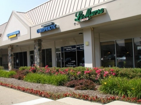 Listing Image #1 - Retail for lease at 43119-43313 Woodward Avenue, Bloomfield Hills MI 48302