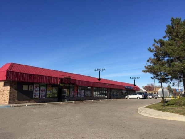 Listing Image #1 - Shopping Center for lease at 21329 Telegraph Road, Southfield MI 48034