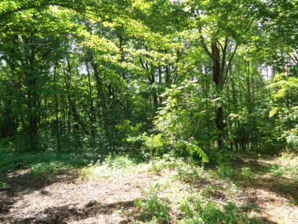 Listing Image #1 - Farm for sale at 1.37 Acr Hawthorne Ln, Wausau WI 54403