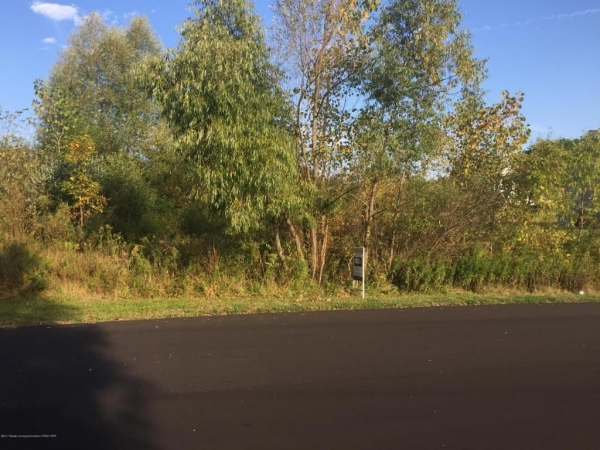 Listing Image #1 - Land for sale at 0 Aberdeen Drive, Dimondale MI 48821