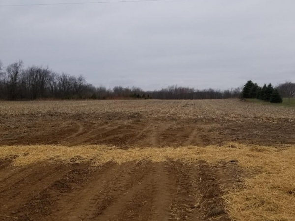 Listing Image #2 - Land for sale at apro 10800 Sheridan, Fenwick MI 48834