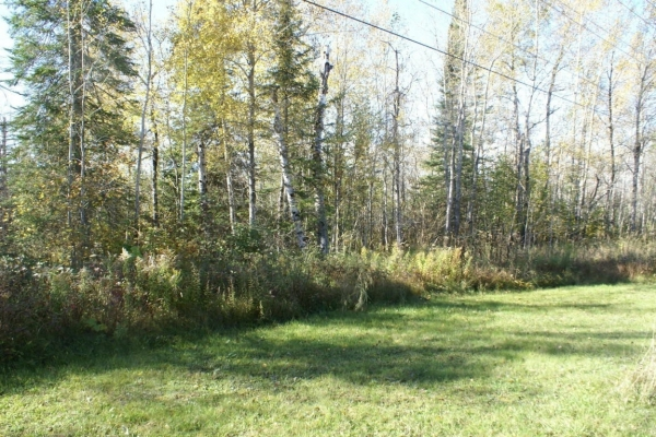 Listing Image #2 - Land for sale at 3730 M-134, Cedarville MI 49719