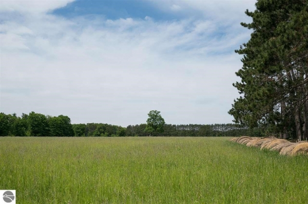 Listing Image #2 - Land for sale at 8229 W 6 1/2 Road, Mesick MI 49668