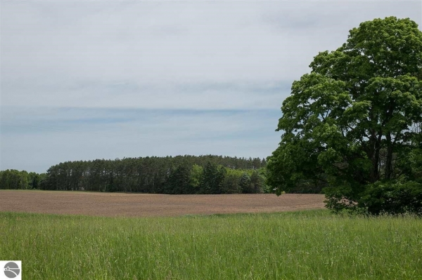 Listing Image #3 - Land for sale at 8229 W 6 1/2 Road, Mesick MI 49668