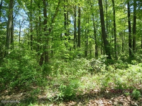 Listing Image #3 - Land for sale at 3114 Red Oak Drive 9, Saugatuck MI 49453