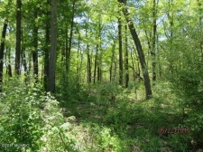 Listing Image #2 - Land for sale at 3114 Red Oak Drive 9, Saugatuck MI 49453
