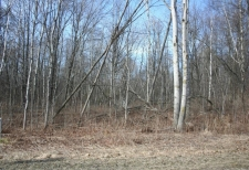 Listing Image #1 - Land for sale at VL Birch Lane, Pentwater MI 49449