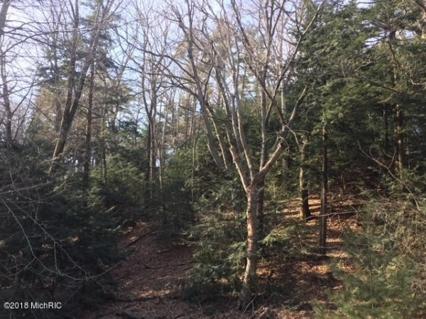 Listing Image #1 - Land for sale at Timber Lane, Shelby MI 49455