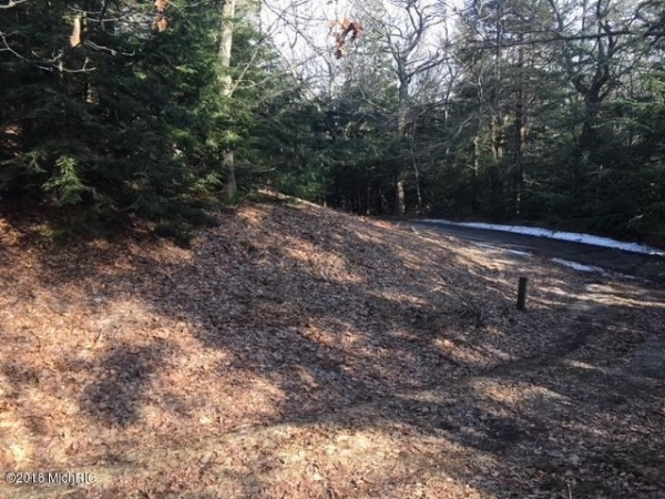 Listing Image #2 - Land for sale at Timber Lane, Shelby MI 49455