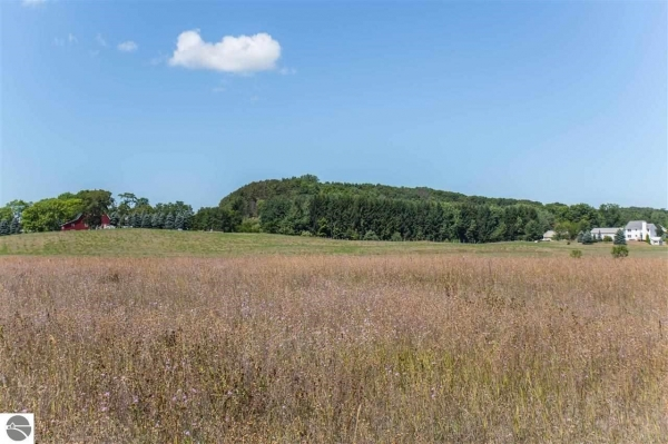 Listing Image #3 - Land for sale at W M-72, Empire MI 49630