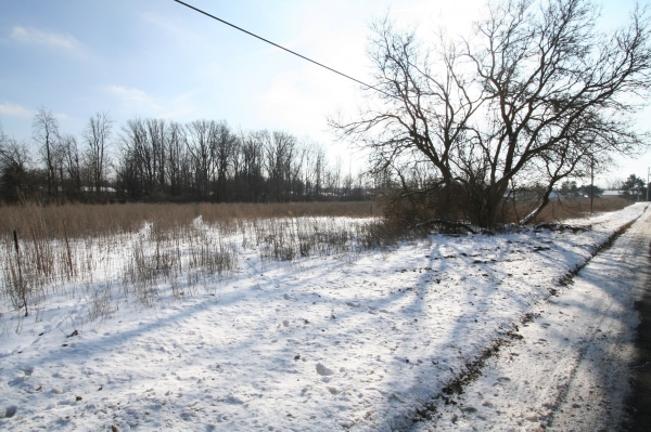 Listing Image #3 - Land for sale at 0 Gilbert Road, Lansing MI 48911