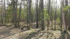 Listing Image #2 - Land for sale at 1373 Ortman Lot 42, Marquette MI 49855