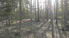 Listing Image #3 - Land for sale at 1373 Ortman Lot 42, Marquette MI 49855