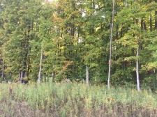 Land for sale in Gaylord, MI