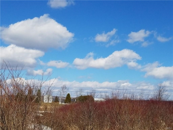 Listing Image #2 - Land for sale at 0 Gun Club RD, Little Falls-Town NY 13365