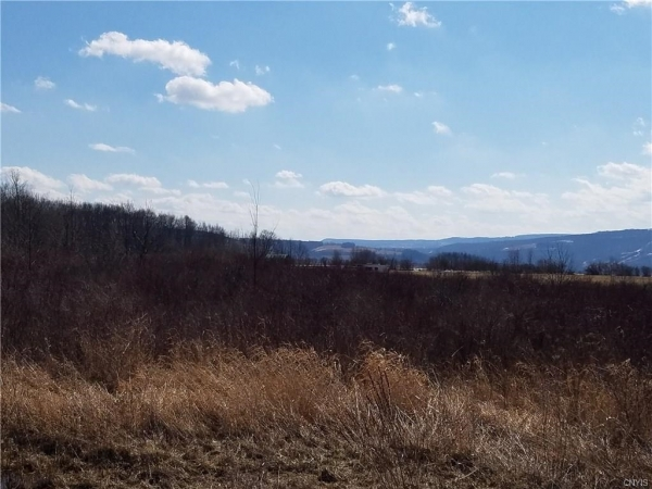 Listing Image #3 - Land for sale at 0 Gun Club RD, Little Falls-Town NY 13365