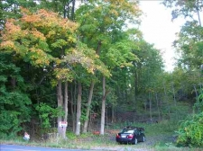 Land for sale in Bethlehem, NY
