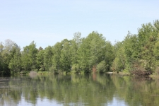 Land for sale in Buckley, MI