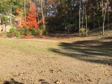 Listing Image #3 - Land for sale at 3553 DOROTHY Lane, Waterford Twp MI 48329