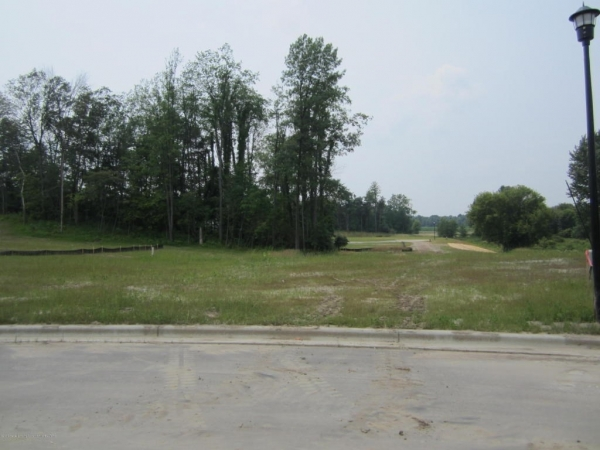 Listing Image #1 - Land for sale at 13578 Sienna Pass, DeWitt MI 48820