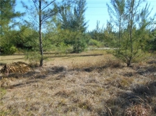 Listing Image #3 - Land for sale at 9389 ST PAUL DRIVE, PORT CHARLOTTE FL 33981
