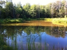 Listing Image #2 - Land for sale at TBD S Krause Rd, Pickford MI 49774