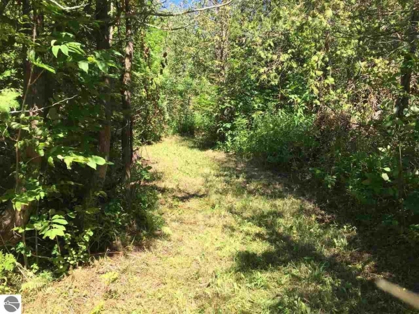 Listing Image #3 - Land for sale at 6.47 acres S Lake Leelanau Drive, Lake Leelanau MI 49653