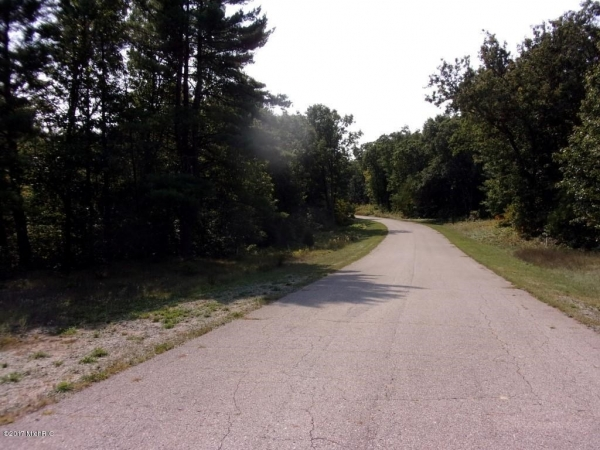 Listing Image #1 - Land for sale at 1627 E Ryan Woods Court 10, Allegan MI 49010