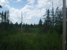 Listing Image #3 - Land for sale at TBD M69, Perronville MI 49873