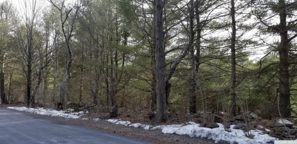 Listing Image #1 - Land for sale at 0 Sunset Hill Road, New Baltimore NY 12124
