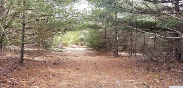 Listing Image #3 - Land for sale at 0 Sunset Hill Road, New Baltimore NY 12124
