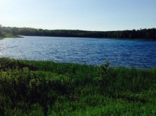 Land for sale in Gulliver, MI