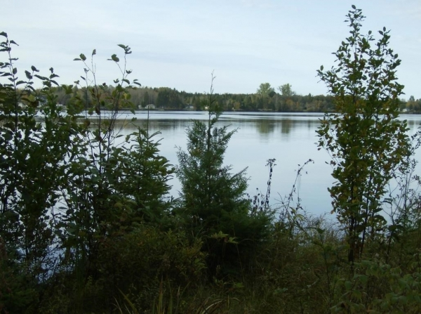 Listing Image #1 - Land for sale at 0 Dukes RD, Moran MI 49760