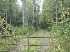 Listing Image #2 - Land for sale at 0 Dukes RD, Moran MI 49760
