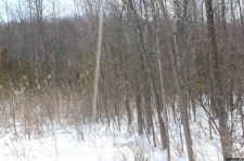 Land for sale in Sharon, NY