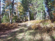 Land for sale in Rogers City, MI
