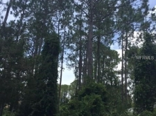 Listing Image #3 - Land for sale at 96 BEAUFORD LANE, PALM COAST FL 32137