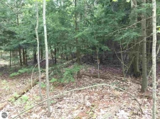 Listing Image #3 - Land for sale at Cathedral Avenue 064 & 066, Interlochen MI 49643