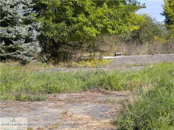 Listing Image #1 - Land for sale at 0 Galway Lot4 Circle, Dimondale MI 48821