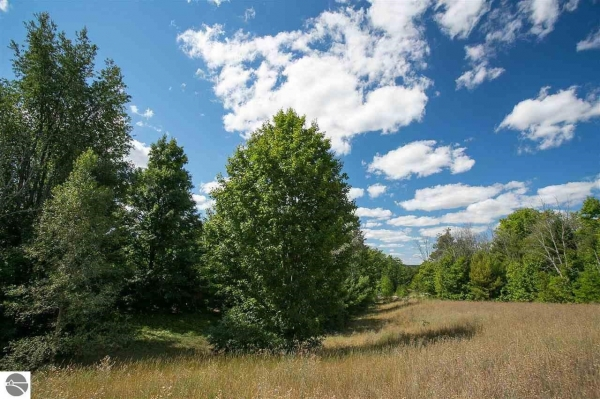 Listing Image #1 - Land for sale at 42 Pleasant Valley, Kingsley MI 49649