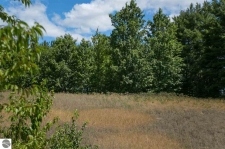 Listing Image #2 - Land for sale at 42 Pleasant Valley, Kingsley MI 49649