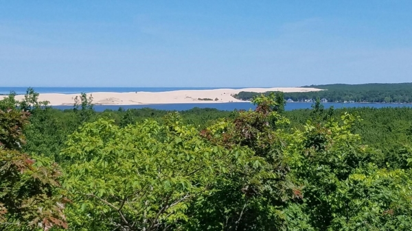 Listing Image #3 - Land for sale at 393 N 28th Avenue, Mears MI 49436