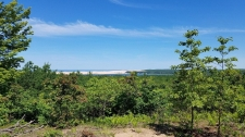 Listing Image #2 - Land for sale at 393 N 28th Avenue, Mears MI 49436