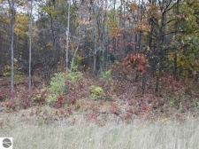 Listing Image #3 - Land for sale at Lot 19 Bramblewood Drive, Cadillac MI 49601