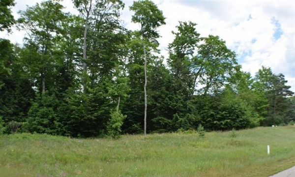 Listing Image #1 - Land for sale at 7885 Bay Skies Court, Harbor Springs MI 49740