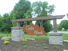 Land for sale in Ionia, MI