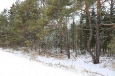 Listing Image #3 - Land for sale at 10752 W US 23 2.69 acres, Mackinaw City MI 49701