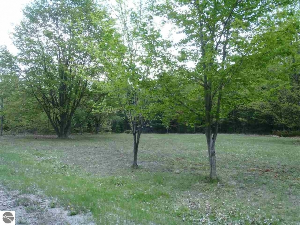 Listing Image #3 - Land for sale at 00 Rose Court, Kewadin MI 49648