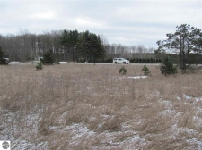 Listing Image #2 - Land for sale at 00 W Houghton Lake Road, Lake City MI 49651